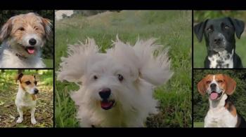 Freshpet TV Spot, 'A Fresh Take on Pet Food' - Thumbnail 2