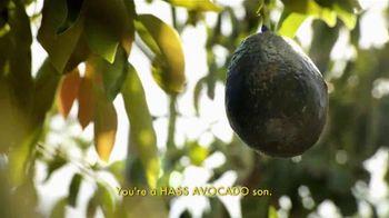 McDonald's Guacamole Sandwiches TV Spot, 'An Avocado's Journey' - 106 commercial airings