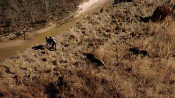 Zoo: Season One Blu-ray TV Spot - Thumbnail 2