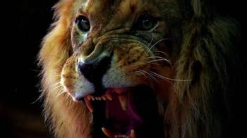 Zoo: Season One Blu-ray TV Spot - Thumbnail 7