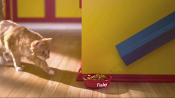 Friskies Grillers TV Spot, 'A Delicious Accident' - Thumbnail 6
