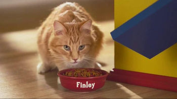 Friskies Grillers TV Spot, 'A Delicious Accident' - Thumbnail 8
