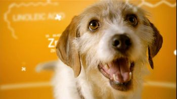 Pedigree TV Spot For The Love Of Dogs