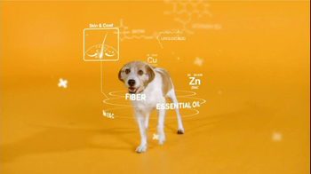 Pedigree TV Spot For The Love Of Dogs - Thumbnail 4
