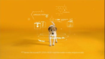 Pedigree TV Spot For The Love Of Dogs - Thumbnail 5