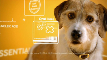 Pedigree TV Spot For The Love Of Dogs - Thumbnail 6