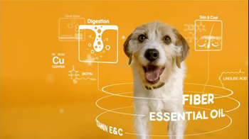 Pedigree TV Spot For The Love Of Dogs - Thumbnail 7