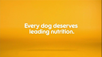 Pedigree TV Spot For The Love Of Dogs - Thumbnail 8