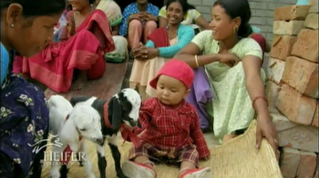 Heifer International TV Spot Featuring Alton Brown - Thumbnail 3