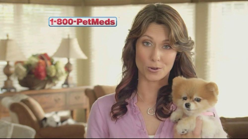1 800 Petmeds Tv Commercial Anything For Them Ispot Tv