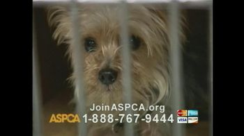 ASPCA TV Spot For If Animals Could Speak - Thumbnail 7