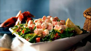 Quiznos TV Spot For Lobster and Seafood Salad Sub and Fresh Salad - Thumbnail 4