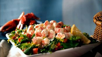 Quiznos TV Spot For Lobster and Seafood Salad Sub and Fresh Salad - Thumbnail 5