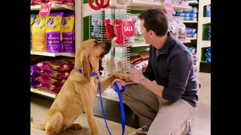 PetSmart TV Spot For Bloodhound Sniff - Thumbnail 8