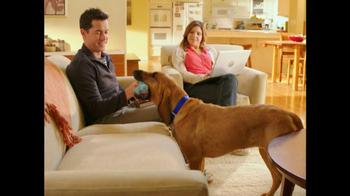 PetSmart TV Spot For Bloodhound Sniff - Thumbnail 4