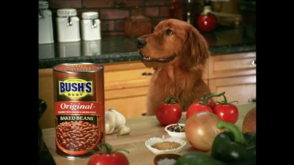 Bush S Best Tv Commercial For Bush S Baked Beans Featuring