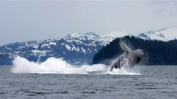 Pacific Life TV Spot, 'Whales' - Thumbnail 9