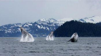 Pacific Life TV Spot, 'Whales' - Thumbnail 8