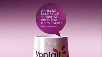 Yoplait Original Blackberry TV Spot, 'Ismail's Tweet' - 15 commercial airings