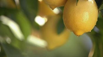 Simply Lemonade TV Spot, 'Sweeter' - Thumbnail 6