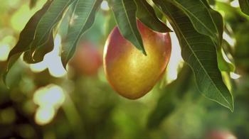 Simply Lemonade TV Spot, 'Sweeter' - Thumbnail 7