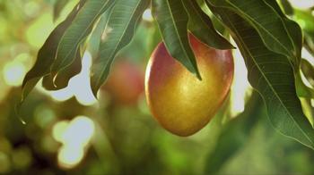 Simply Lemonade TV Spot, 'Sweeter' - Thumbnail 8