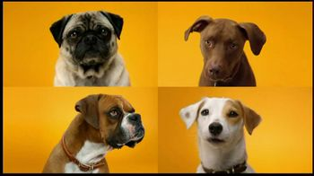 Pedigree Dentastix TV Spot, 'Doggie Dentures' - Thumbnail 1