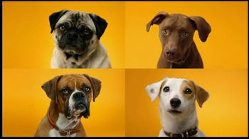 Pedigree Dentastix TV Spot, 'Doggie Dentures' - Thumbnail 2