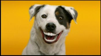 Pedigree Dentastix TV Spot, 'Doggie Dentures' - Thumbnail 4