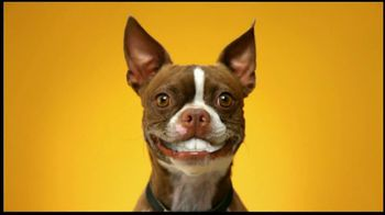 Pedigree Dentastix TV Spot, 'Doggie Dentures' - Thumbnail 5