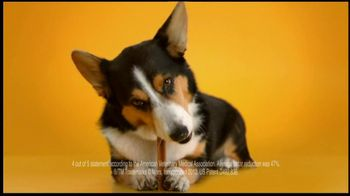 Pedigree Dentastix TV Spot, 'Doggie Dentures' - Thumbnail 7