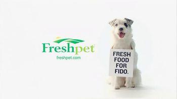 Freshpet TV Spot For Only Preservative Is The Fridge - Thumbnail 4