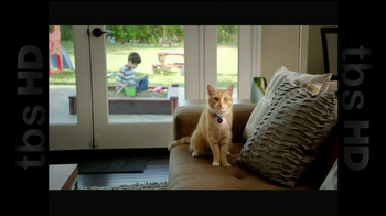 The Shelter Pet Project TV Spot, 'Cat Sandbox' - Thumbnail 1