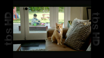 The Shelter Pet Project TV Spot, 'Cat Sandbox' - Thumbnail 2
