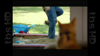 The Shelter Pet Project TV Spot, 'Cat Sandbox' - Thumbnail 6