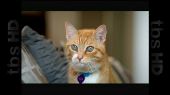 The Shelter Pet Project TV Spot, 'Cat Sandbox'