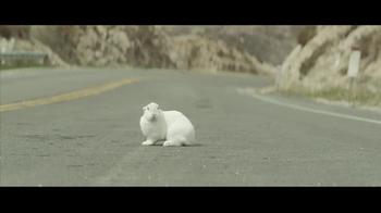 Ken's Foods TV Spot For Truck Stop Rabbit - Thumbnail 2
