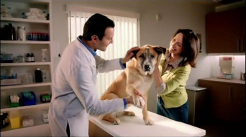 Frontline Plus TV Spot for Flea and Tick Protection - Thumbnail 10
