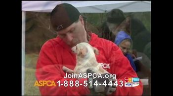 ASPCA TV Spot For Neglect and Abused Animals - Thumbnail 7
