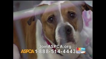 ASPCA TV Spot For Neglect and Abused Animals