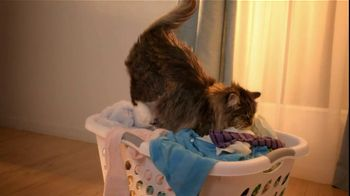 Temptations Cat Treats TV Spot For Leaving Laundry - Thumbnail 2