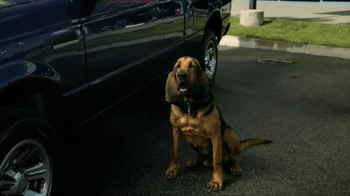 Carfax TV Spot, 'Bloodhound Sniff' - Thumbnail 4