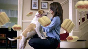 Purina Beneful Baked Delights Hugs TV Spot - Thumbnail 7