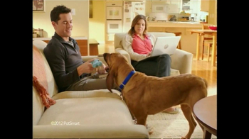 PetSmart TV Spot For Pet Perks Deal Alert - Thumbnail 2