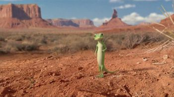 GEICO TV Spot, 'Strange Desert' Featuring Road Runner and Wile E. Coyote