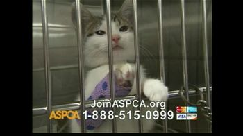 ASPCA TV Spot For The Innocent Ones - Thumbnail 7