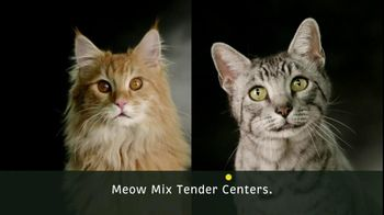 Meow Mix TV Spot for Meow Mix Tender Centers - Thumbnail 5