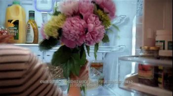 Kenmore Elite TV Spot, 'Protector' - Thumbnail 7