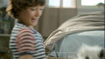Cesar TV Spot For Canine Cuisine With Lola - Thumbnail 4