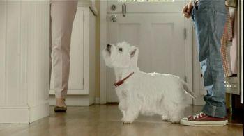 Cesar TV Spot For Canine Cuisine With Lola - Thumbnail 6